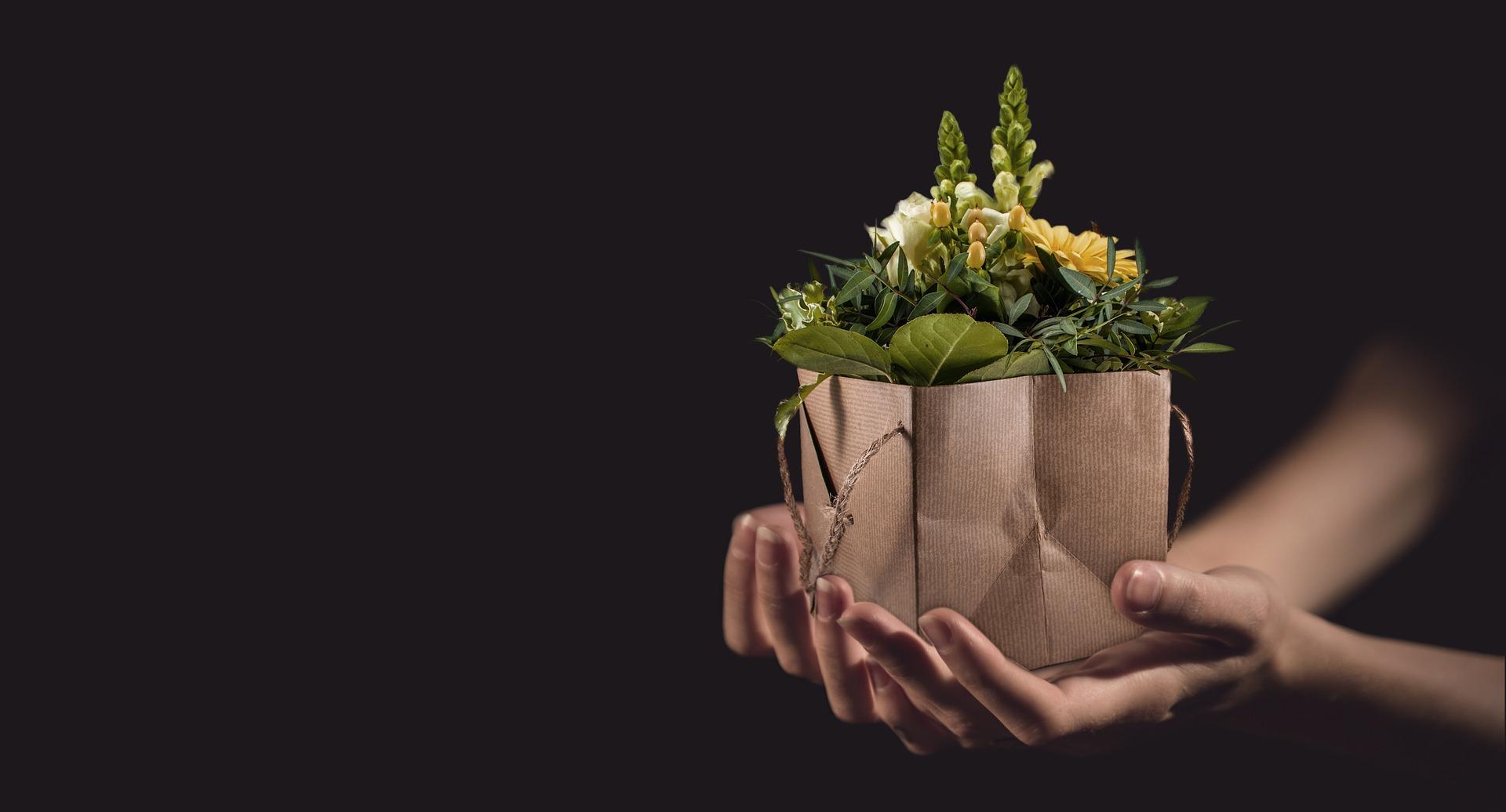 Día Mundial del Veganismo. Receta vegana de regalo